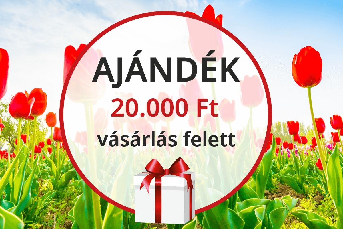 /hirek/2021-ujevi-ajandekaink-20000-ft-vasarlas-felett-328
