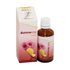 Energovital Echinacea csepp + C-vitamin belsőleges oldatos csepp étrend-kiegészítő 50 ml