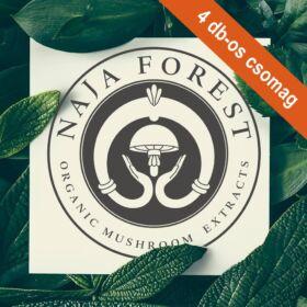 Tetszőleges 4 db-os Naja Forest folyékony gombakivonat csomag 4x100 ml
