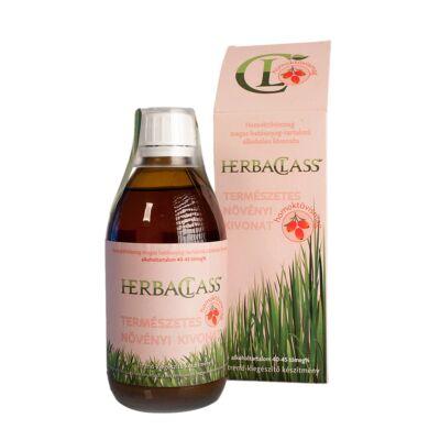 HerbaClass Homoktövismag természetes növényi kivonat 300 ml