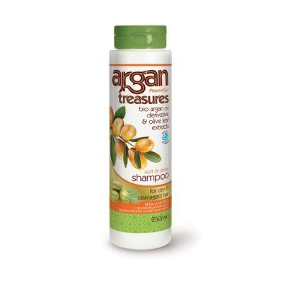 Argan Treasures Sampon száraz és sérült hajra 250 ml